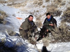 Donnie & Mark with 2 darted wolves