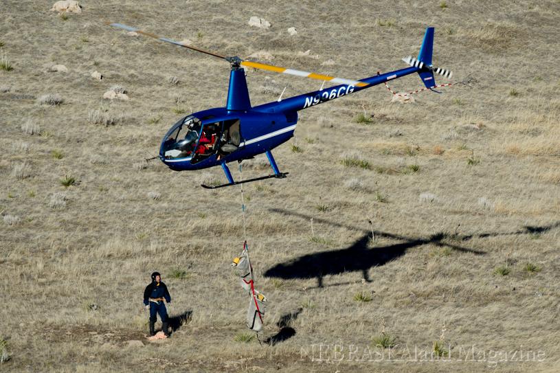 Slinging 2 bighorn sheep, Nebraska